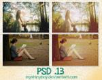 PSD .13