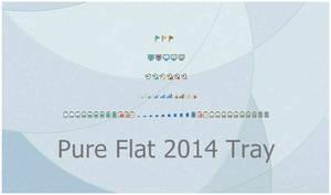 Pure Flat 2014 Tray