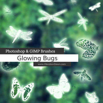 Glowing Bugs Photoshop and GIMP Brushes by redheadstock