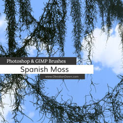 Spanish Moss Photoshop and GIMP Brushes by redheadstock