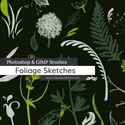 Foliage Sketches Photoshop and GIMP Brushes by redheadstock