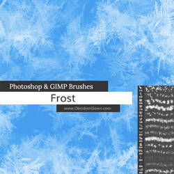 Frost Texture Photoshop and GIMP Brushes