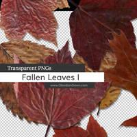 Fallen Leaves PNGs by redheadstock