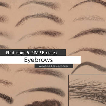 Eyebrows Photoshop and GIMP Brushes by redheadstock