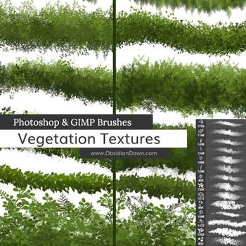 Vegetation / Foliage Textures Photoshop Brushes by redheadstock