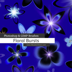 Floral Bursts Photoshop and GIMP Brushes