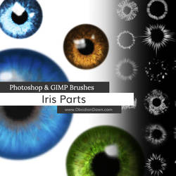 Iris Parts (Eyes) Photoshop and GIMP Brushes