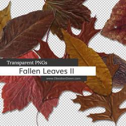 Fallen Autumn Leaves II PNGs