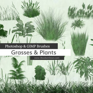 Grasses and Plants Photoshop and GIMP Brushes