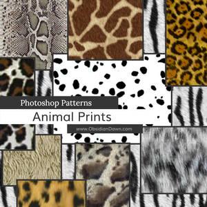 Animal Prints Photoshop Patterns