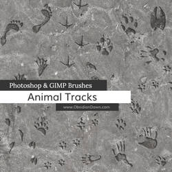 Animal Tracks Photoshop and GIMP Brushes