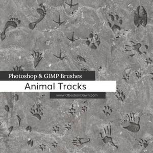 Animal Tracks Photoshop and GIMP Brushes
