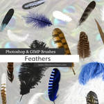 Feathers Photoshop and GIMP Brushes