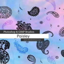 Paisley Photoshop and GIMP Brushes