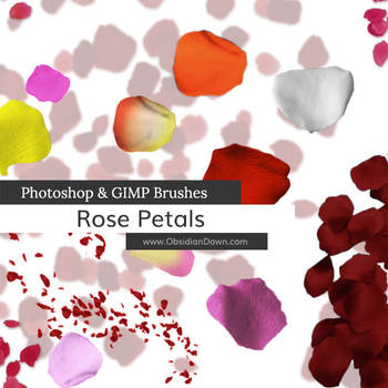Rose Petal Photoshop and GIMP Brushes