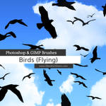 Birds Flying Photoshop and GIMP Brushes