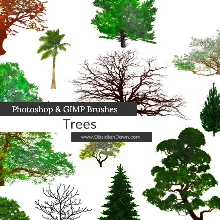 Trees Photoshop and GIMP Brushes