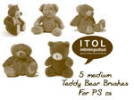 Teddy Bear Brushes