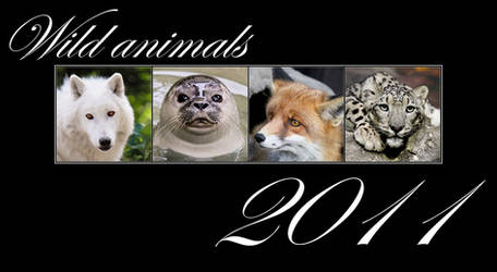 Animals calendar 2011 FOR FREE