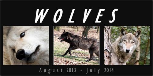 WOLF calendar 2013 - 2014 ----- FOR FREE!!!!!