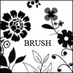 Brush_Flower_Kastoua by Kastoua