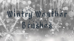 Wintry Weather Brushes