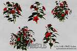UNRESTRICTED - Hibiscus Tubes