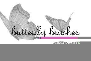 butterflys by xXtimeless-stockXx