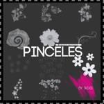 Pinceles Flores