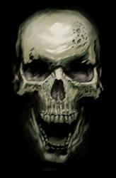 Skull Study by ArtOfThompson