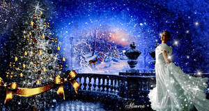 Wonderful Christmas Night flash