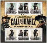 Call of Juarez 2 icons