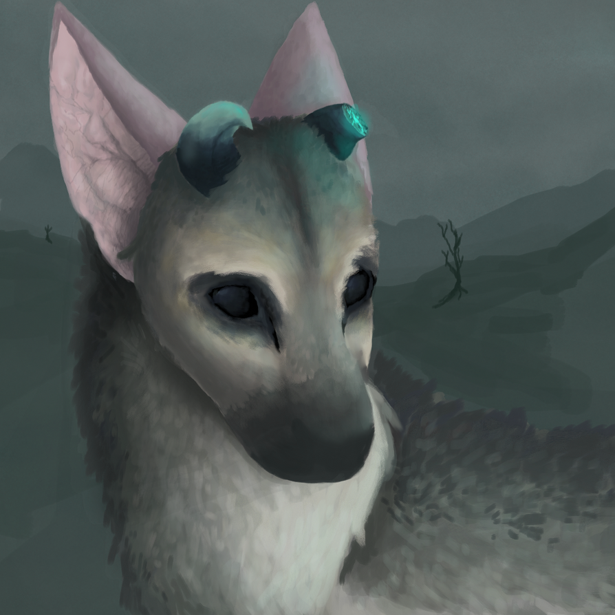 Trico by Endercat360