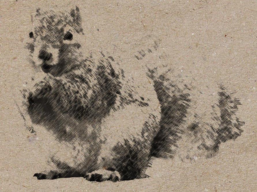squirrel brush by briciius