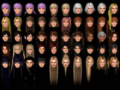 XNALara-Fanatic's Head Stash (Female Version)
