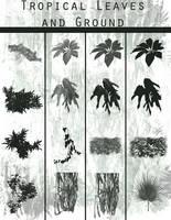 Tropical Leaf brushes.abr by ArtbyGloriaColom