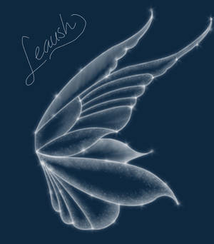 Fae wings stock