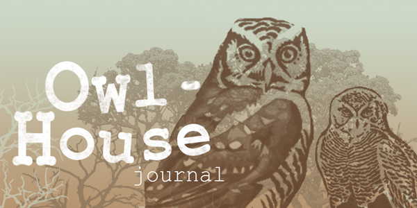 Owl-house Journal by Redilion