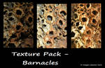 Texture Pack - barnacles