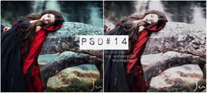 #14 PSD