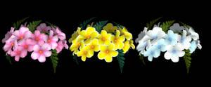DOAXVV Accessories - Flower Crown