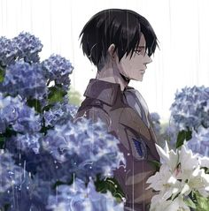 Bouquet of Hyacinths | Levi x Sick!Reader {AU} by Words-Of