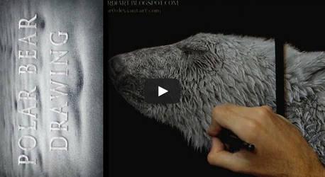 Polar Bear - Timelapse by AmBr0