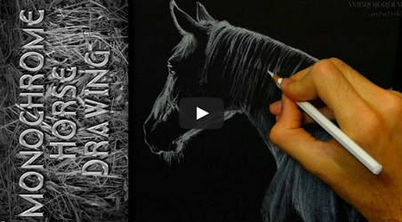 Monochrome Horse - Timelapse by AmBr0