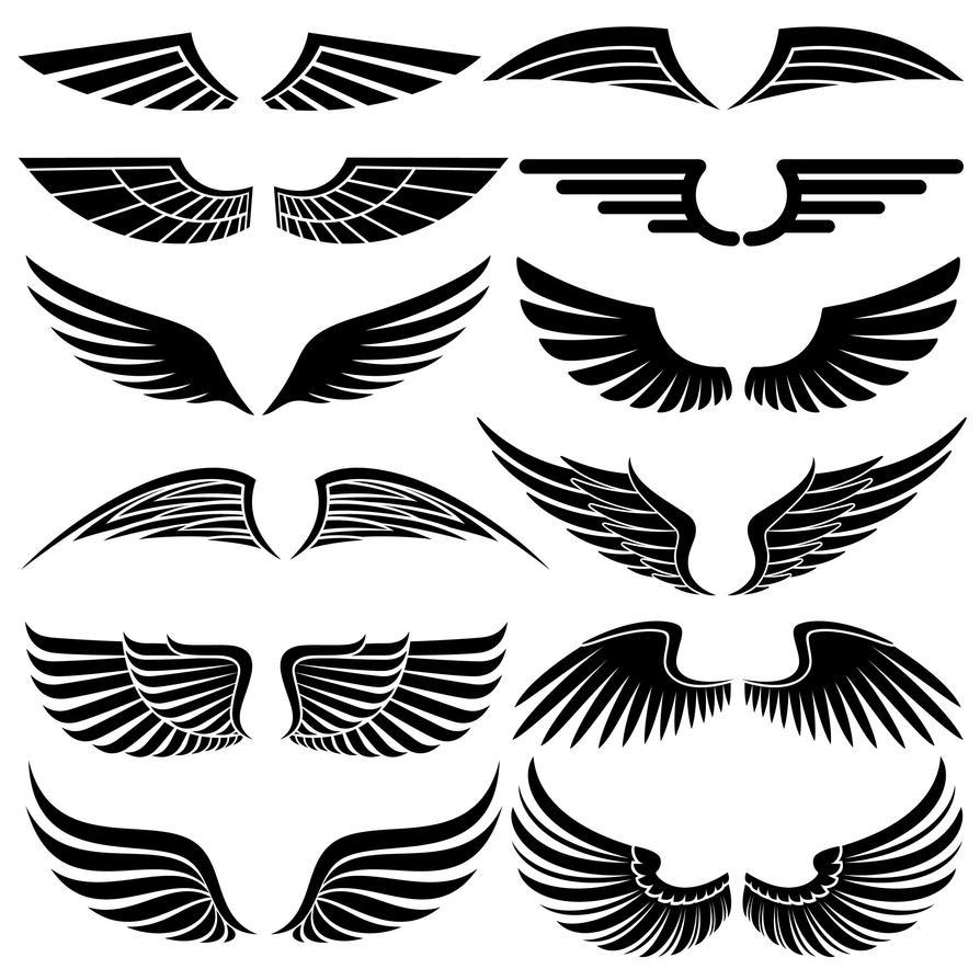 12 Wing Brushes by rabidbribri