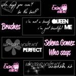 Brushes Selena Who Says