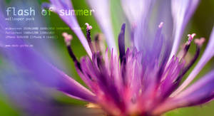 flash of summer wallpaper pack