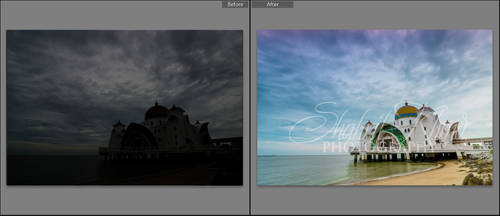 Lightroom Preset : Turn Photo to Stunning Tone/Col