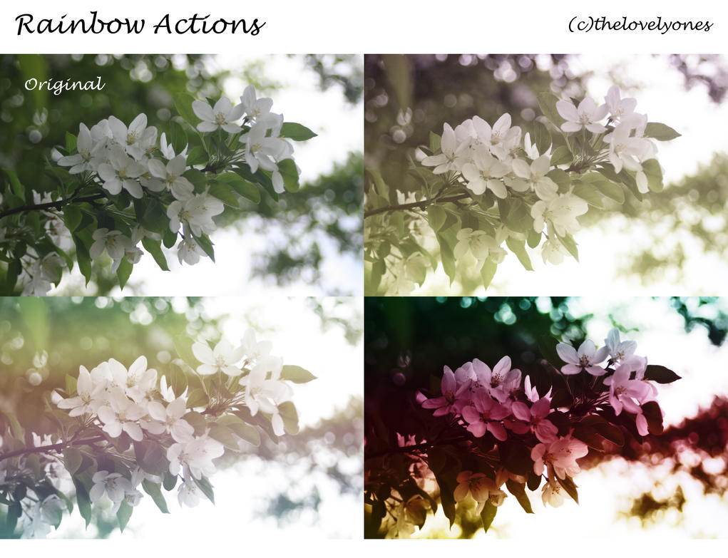 Rainbow Actions by thelovelyones