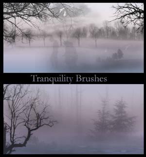 Tranquility Brushes